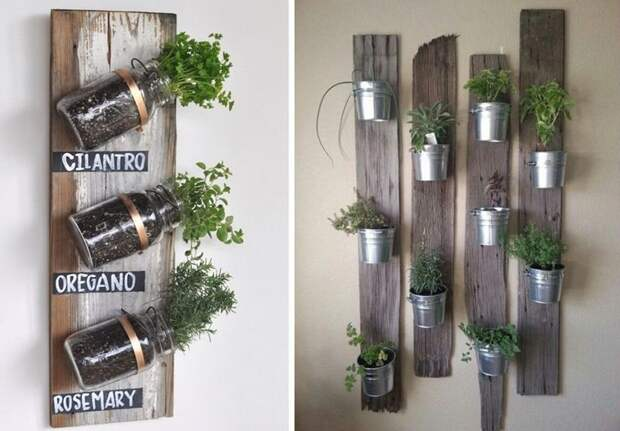 Только выберите подходящий вам способ размещения растений зеленый, лестницы, полки, растения, этажерки