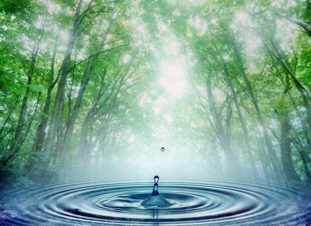 В Геленджике ищут новые запасы воды