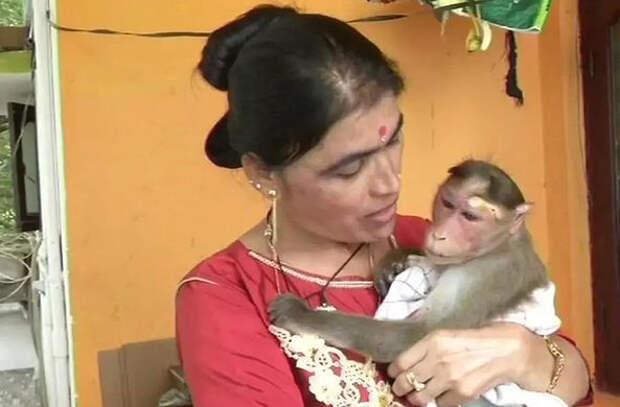Офицер полиции из Индии спасла и усыновила мартышку