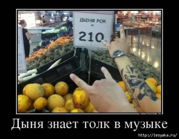 1372745902_novye-demki-14 (500x390, 99Kb)