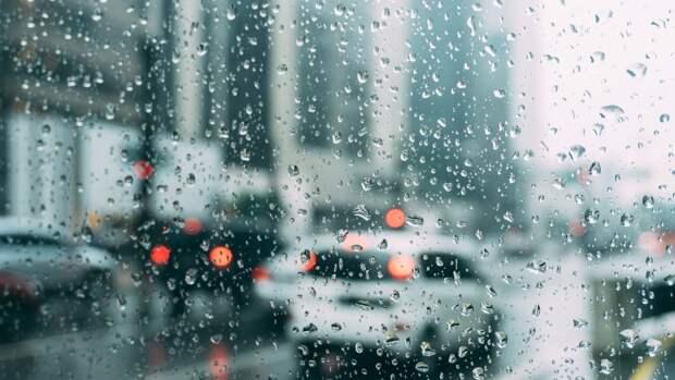 Периферия циклона окажет влияние на погоду в Петербурге 24 сентября