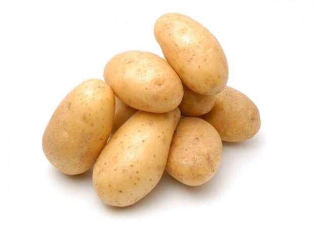 Блюда из картошки