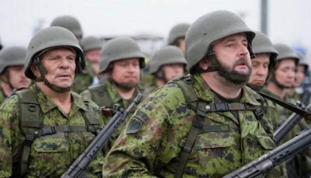 Знаетели вы, что: министр обороны Эстонии назвал своих военных лучшими вмире | Продолжение проекта «Русская Весна»