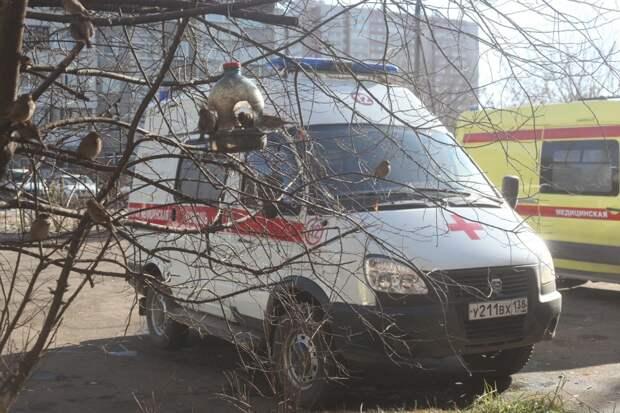 135 случаев коронавируса подтвердили в Иркутской области за сутки