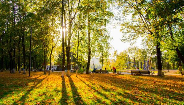 7 октября станет самым теплым днем текущей недели в Московском регионе