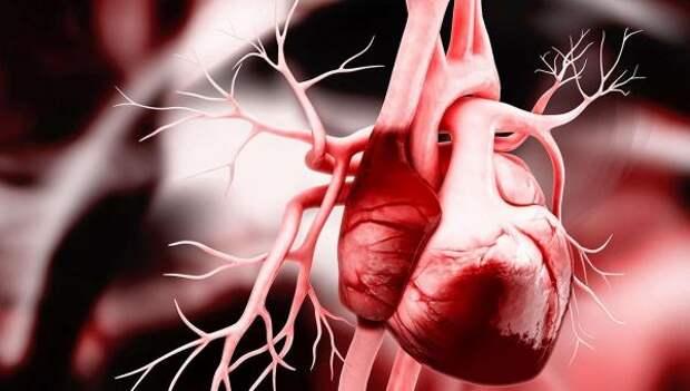 Коронавирус оказался способен повреждать ткани сердца