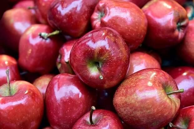 В Краснодаре уничтожили крупную партию польских яблок и вишни