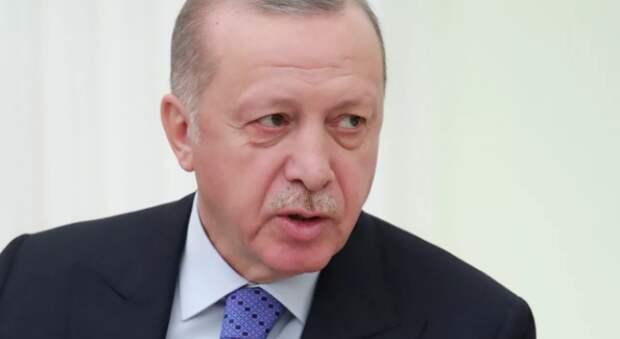 Дружба дружбой… Эрдоган заявил, что Турция никогда не признает Крым российским