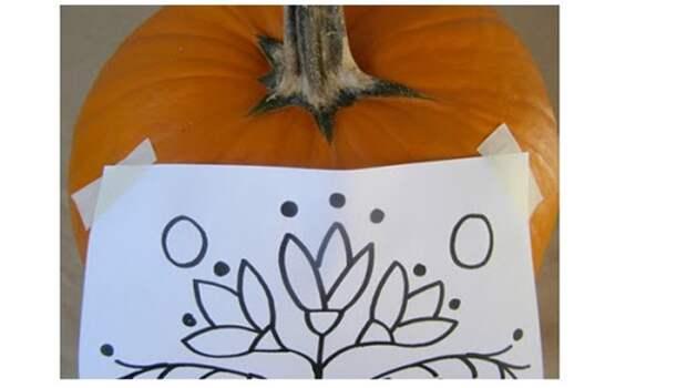 Корзинка из тыквы своими руками: поделки из природных материалов. Резная корзиночка из тыквы: возможности карвинга