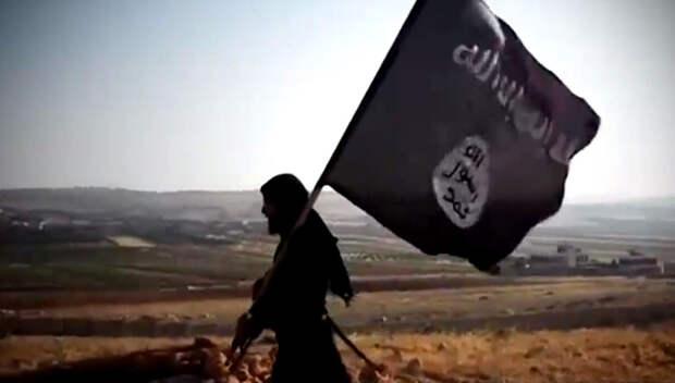Видео убийства Кэндзи Гото: боевики ИГ пообещали, что устроят для Японии кошмар