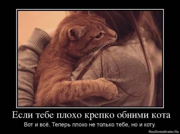 Смешные картинки с надписями про отношения (20 фото)