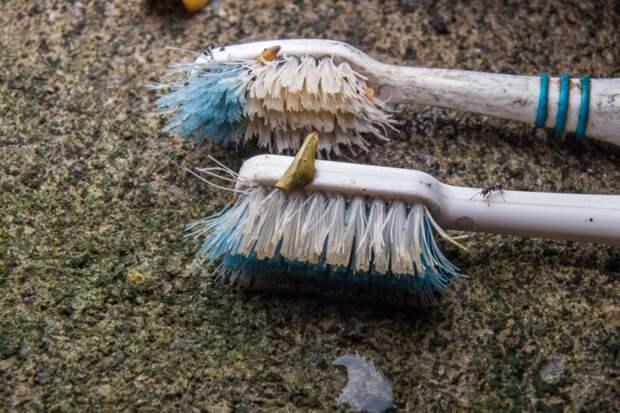 10 предметов домашнего обихода, которые вы должны регулярно менять