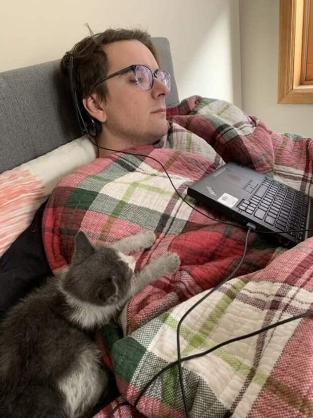 мужчина и котенок отдыхают