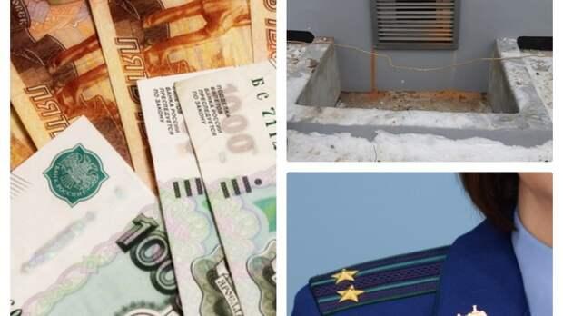 Подвал для кошек, деньги на баланс и предостережение властям Ижевска: итоги пятницы