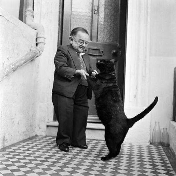 Самый маленький человек 50-х (76 см) Генри Беренс танцует со своим котом. Великобритания, 1956 год знаменитости, исторические фотографии, история, редкие фотографии, фото