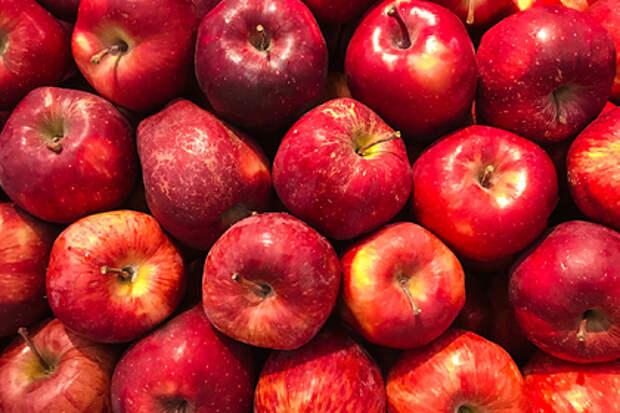 Названы опасные последствия переедания фруктов