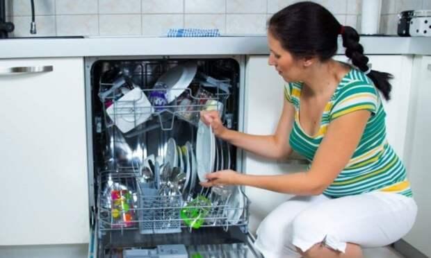 Женщины зажрались: без посудомойки не едут на дачу