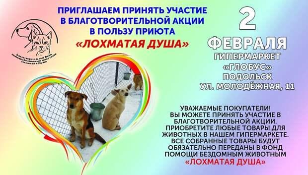 Благотворительная акция в помощь животным пройдет в Подольске