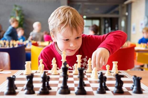 Онлайн-занятие шахматной секции «ЭПИ-Алтуфьево» пройдёт 26 мая