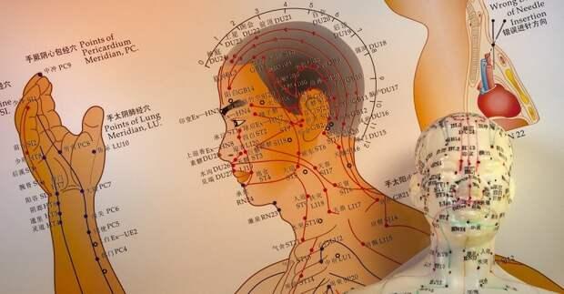 меридианы тела