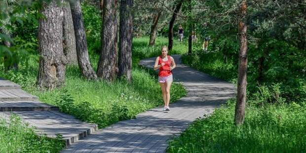 Депутат МГД Бускин: Парки столицы помогают смягчить агрессивную среду мегаполиса