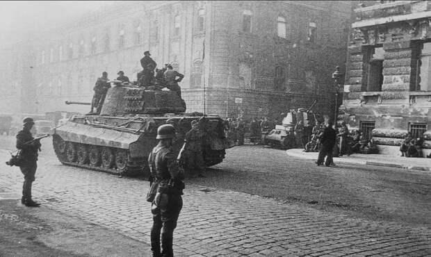 «Королевские Тигры» в Венгрии: первые бои