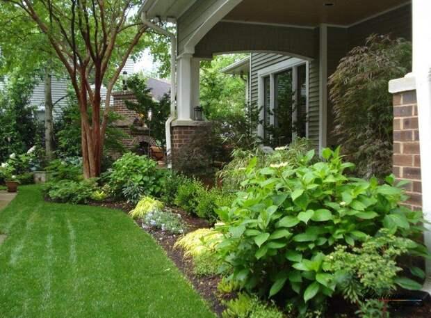 30 лучших идей по озеленению вашего участка