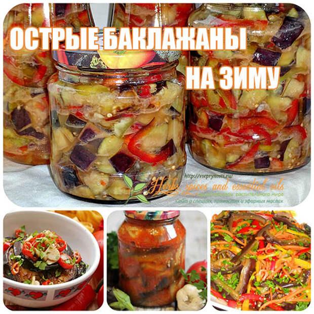 Острые баклажаны на зиму — самые вкусные рецепты