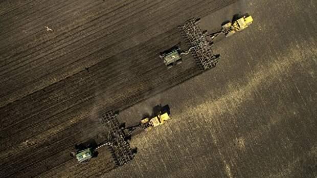 В Липецкой области завершился сев зерновых и бобовых