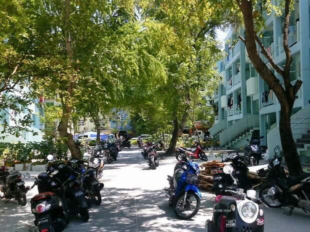 Малобюджетная поездка по четырём мальдивским островам   Мальдивы, Химанду, путешествия