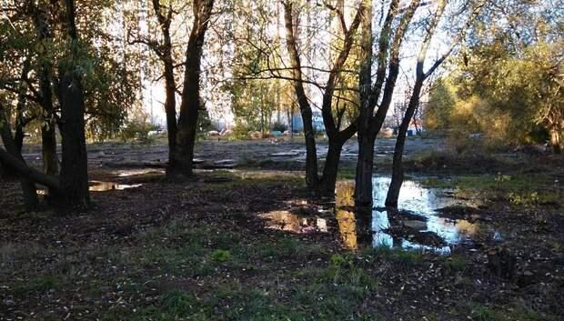 Выясняются причины появления зловонных луж возле дома в Подольске