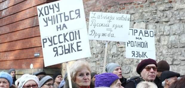 митинг за право учиться на русском языке в Латвии. фото Baltnews