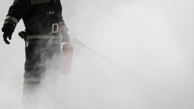 Спасатели тушат охваченную огнем пилораму в Ленобласти