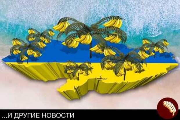 Украина стала настоящей банановой республикой