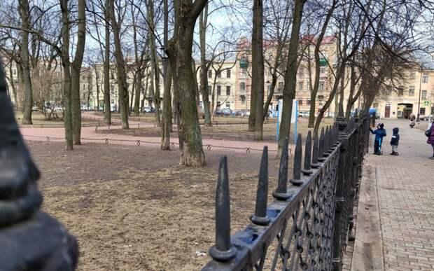 В Петербурге снова открыли сады и парки: порывы ветра стихли