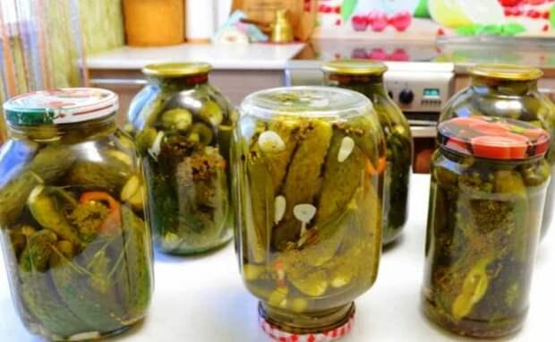 Огурцы Молоденовские без уксуса. Хрустящие, вкусные огурчики на зиму 2
