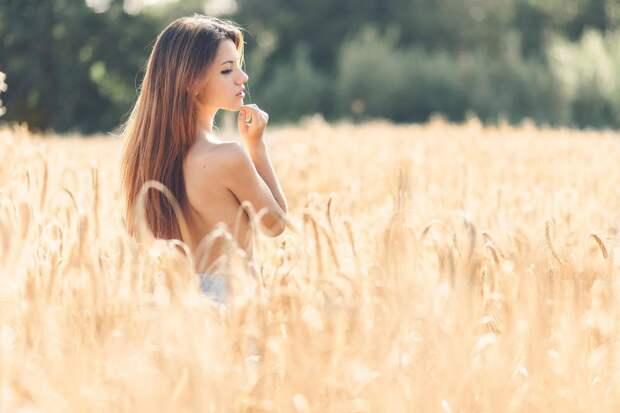 колосья, лето, поле, девушка, профиль (с изображениями) | Летние ...