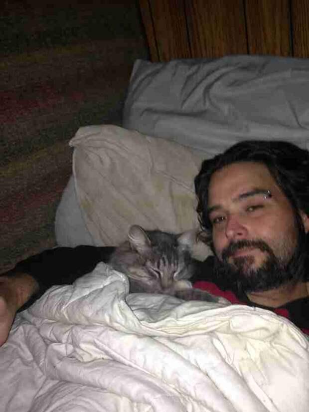 Мужчина жил с кошкой 10 лет… А потом выяснилось, что МУРлыка где-то ворует вещи!