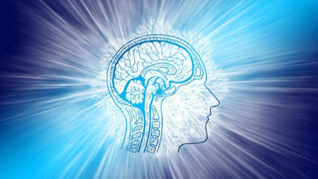 Перенастройка мозга человека
