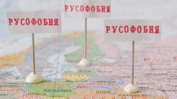 Русофобский акт Вильнюса обернется проблемами для всего населения Литвы