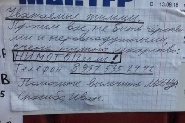 Маленький мальчик расклеил по городу объявления с просьбой спасти маму (ФОТО)