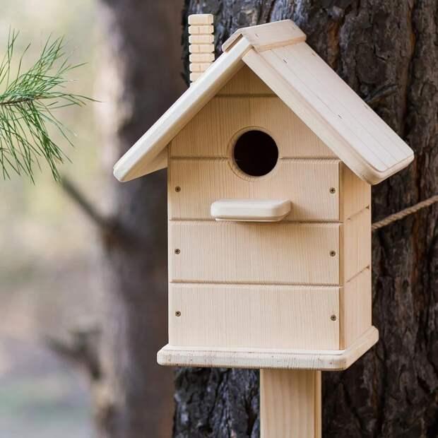В парках Лосинки отметят День птиц