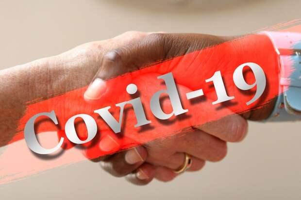 В России за сутки выявлено 20 329 случаев коронавируса