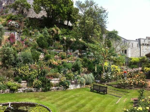 Сад Виндзорского замка примет посетителей впервые за 40 лет