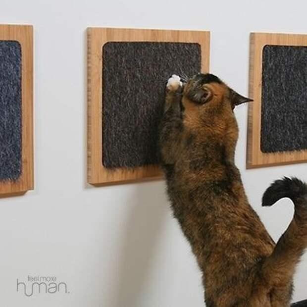 Цап-царапы для котов