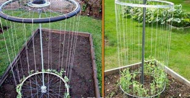 Они вам пригодятся для вьющихся растений, удобно и практично.