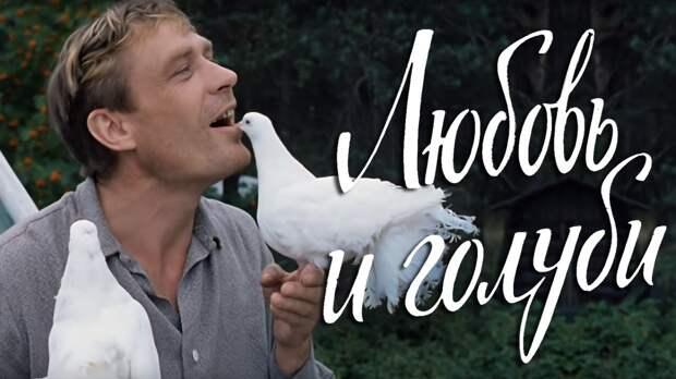 Иностранный взгляд на «Любовь и голуби»: что говорят о фильме зарубежные зрители