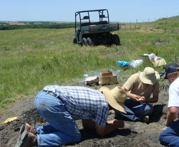 Исследователи раскапывают ферму в Канзасе, где были найдены зубы Кредота. Изображение взято из Университета ДеПола .