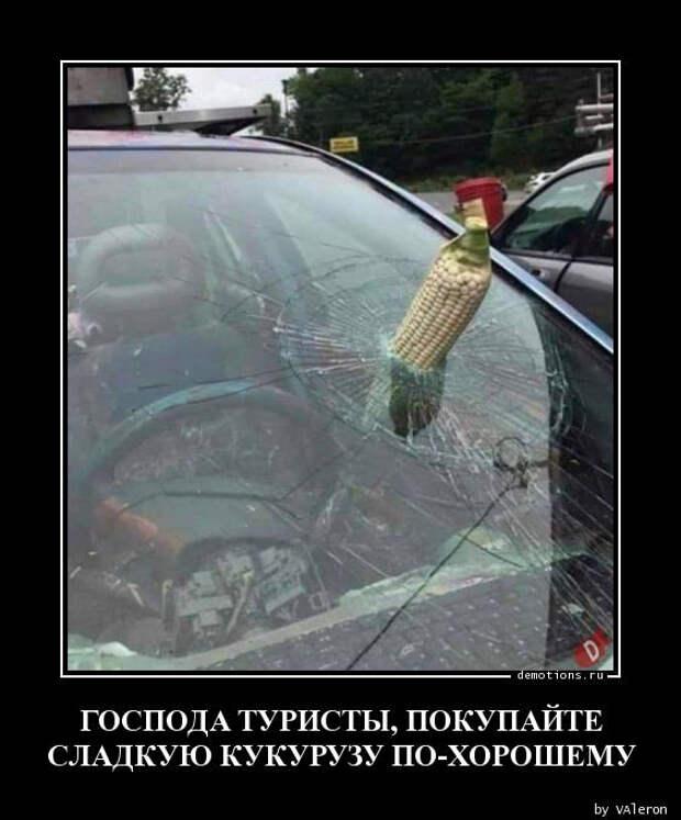 Прикольных демотиваторов сборник (27 фото)