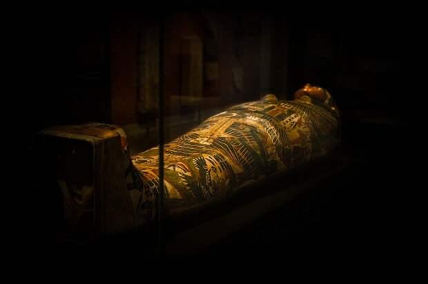 Более 20 мумий перевезли из Каира в новый музей
